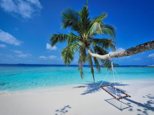 Balayı Turları, Bandos Maldives