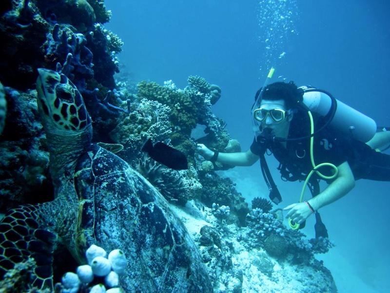 Dalış Kulübü, Coco Bodu Hithi Maldivler