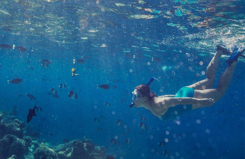 Dalış, Kurumba Maldives