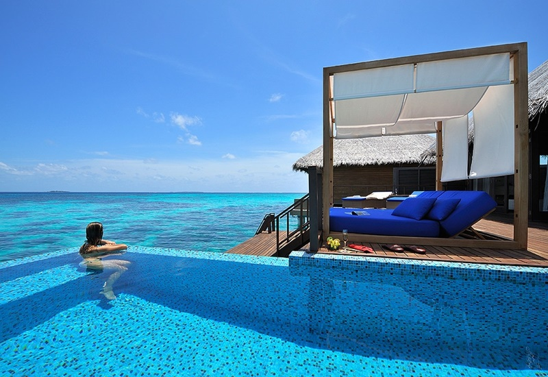 Water Villa Havuz, Coco Bodu Hithi Maldivler