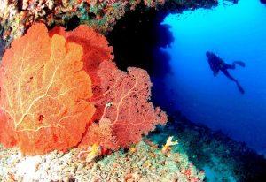 Dalış Kulübü, Anantara Veli Maldives Resort