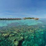 Deniz, Ayada Resort Maldivler
