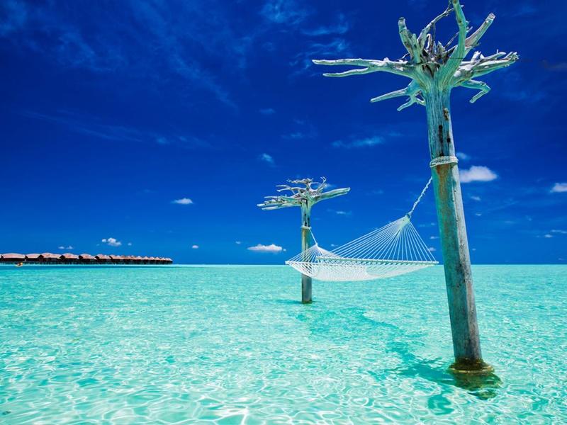 Hamak, Anantara Dhigu Resort Maldivler
