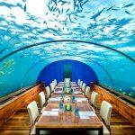Restaurant, Conrad Rangali Island Maldivler