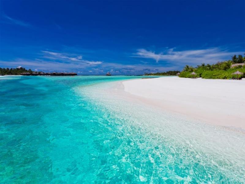 Sahil, Anantara Dhigu Resort Maldivler