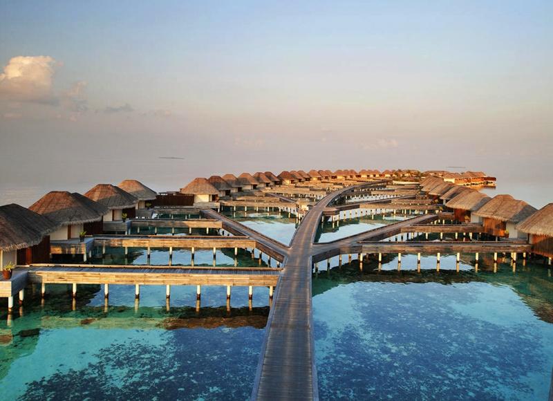 Bungalow, W Retreat, Maldivler
