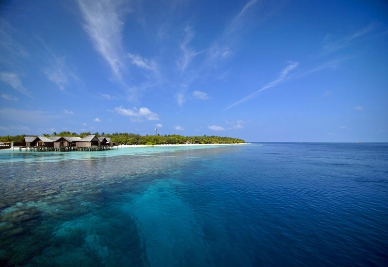 Deniz, Lily Beach Maldivler